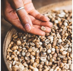 Kolumbia Arabica Kaffee...
